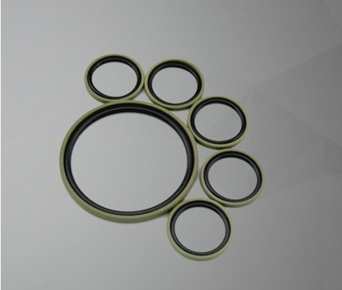 Bronze Filled PTFE Piston Seal