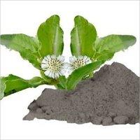 Bhringraj (Bhangro) Powder