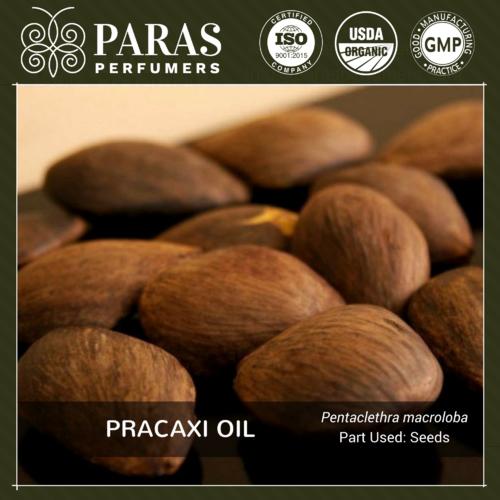 Pracaxi (Pracachy) Oil