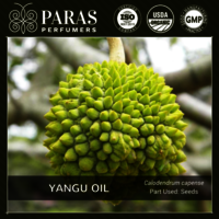 Yangu (Cape Chestnut) Oil