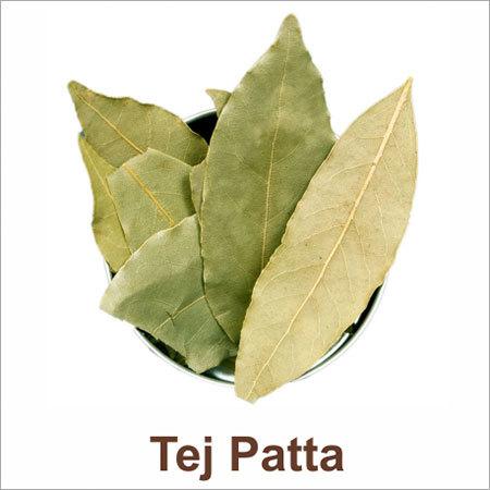 Tej Patta