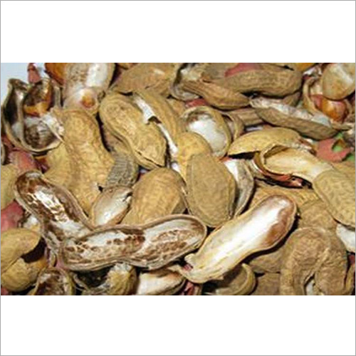 Groundnut Shell