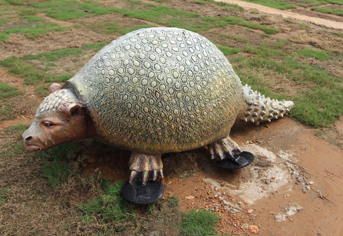 Evolution Park Glyptodon