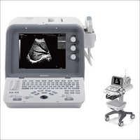 Digital Diagnostic Ultrasound System