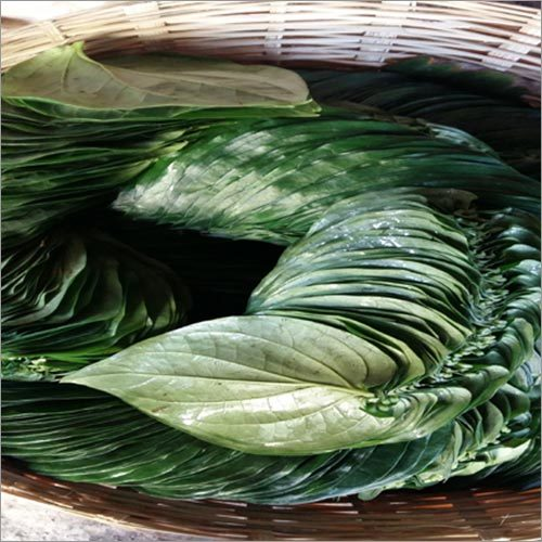 Pali Leaves