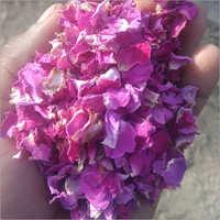 Oraganic Pink Rose Petals