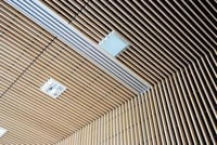 Metal Perforated Celling