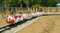 Cat Toy Train