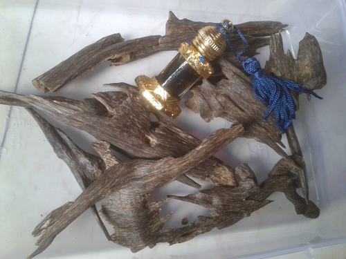 oud Oil Indian