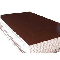 Commercial Shuttering Plywood