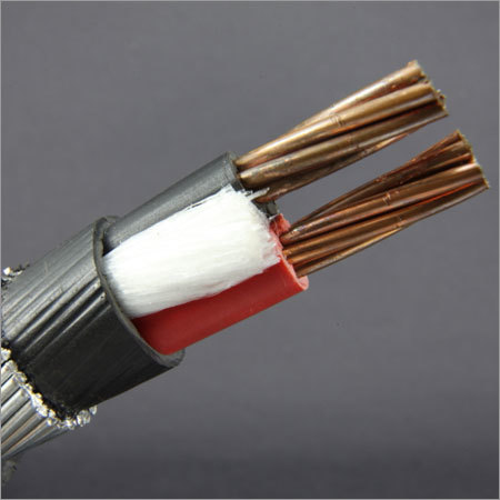 2 Core Armoured Cable