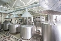 Food processing Plant & Machinery