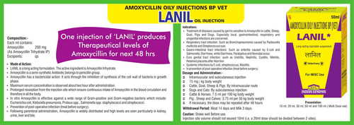 Amoxicillin trihydrate oily injection BP vet (Lanil)