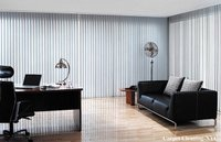 Window Blinds Cleaning Services