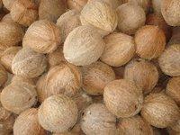 Semi Husk Coconut