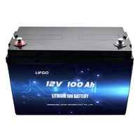 12V 100Ah LiFePO4 battery pack for accumulator
