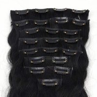 Clipon Hair Extensions