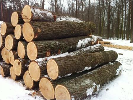 Pyinkado Round Logs