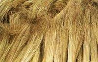Raw Broom Materials