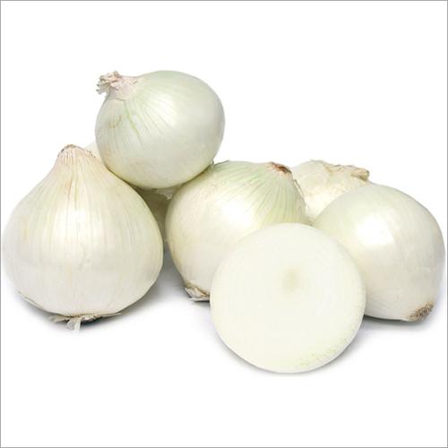 Pure White Onion