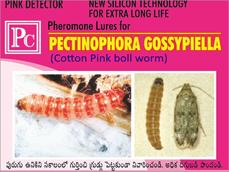 Pink Boll Worm Pheromone Lures