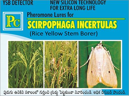 Scirpophaga Incertulas Pheromone Lures