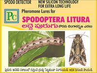 Spodoptera Litura Pheromone Lures