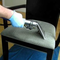 Dining Chair Shampoo Cleaning