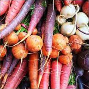 Root Crops Fertilizer