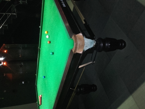 Professional snooker table