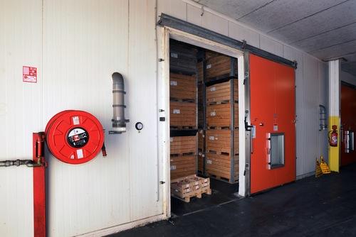 Mushroom Cold Storage Room
