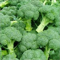 Fresh Brocooli