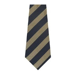 Polyester Strip Ties