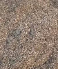 wood Powder Base Biomass Briquettes