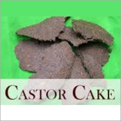 Castor Cake