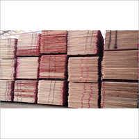 Latest Plywoods