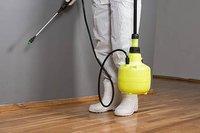 Wooden Flooring Pest Control