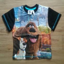 Boys Half Sleeve T Shirts