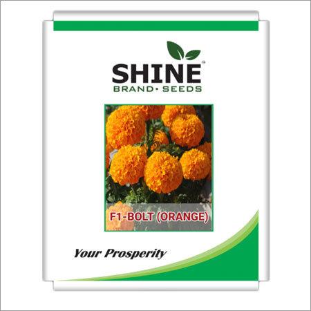 Orange Merigold Seeds