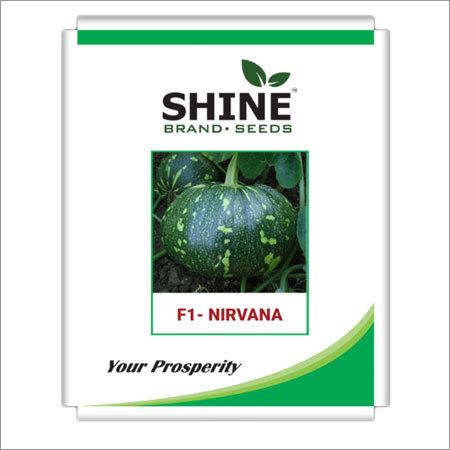 Pumpkin Seeds - f1 Nirwana