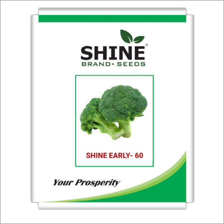 Broccoli - Shine Early - 60 Seed