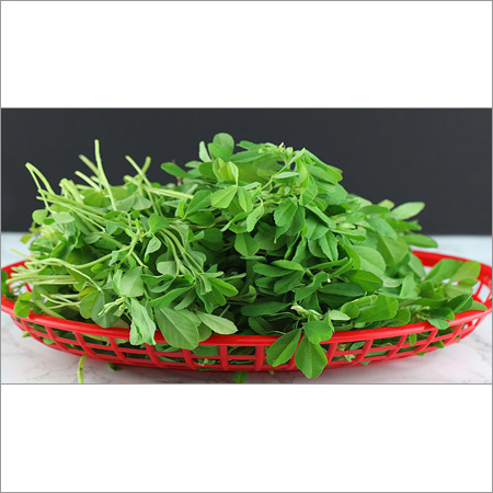 Fenugreek Leaf