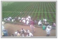 Farmer Training services