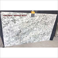 Arendus White Granite Tiles