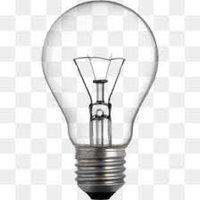 Bulb 100 Watt