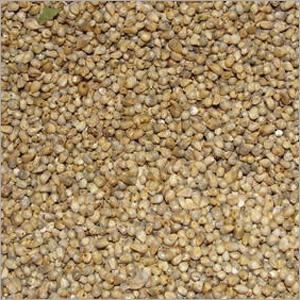 Green Millet Bajara
