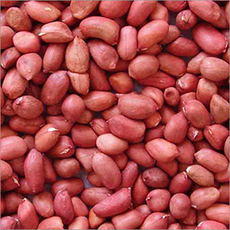 Groundnut Shells Kernels