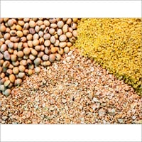 Oil Seed Meal