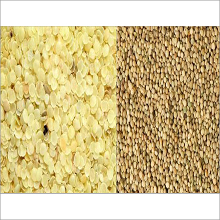 Guar Seed Products