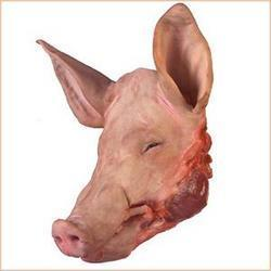 Frozen Pork Head